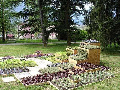 Provincia autonoma di trento servizio per il sostegno - L orto in giardino ...